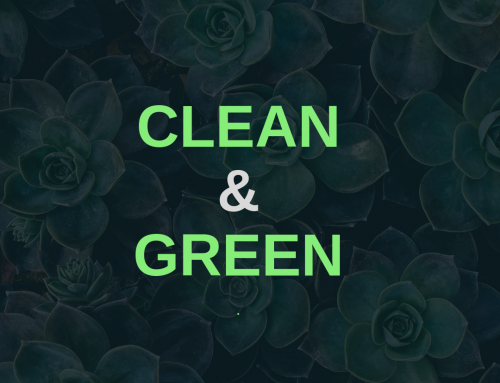 5 Key Benefits Of Green Carpet and Upholstery Cleaning